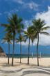 Coconut trees by the gold sandy beach of Copacabana in a bright daylight cloudy blue sky, Rio de Janeiro, Brazil.