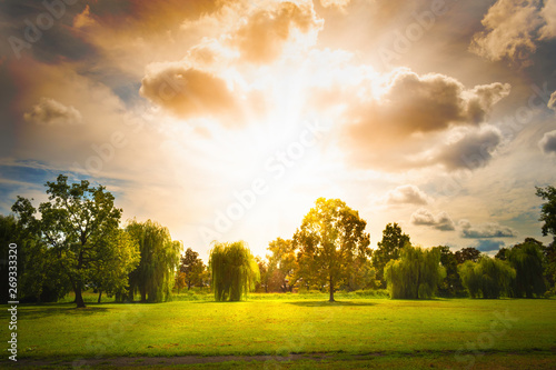 Montage in der Fensternische Beige landscape with trees, blue sky an sunrays. very bright rays of the sun.