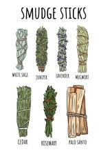 Sage Smudge Sticks Hand-drawn Set Of Doodles. Herb Bundles Collection