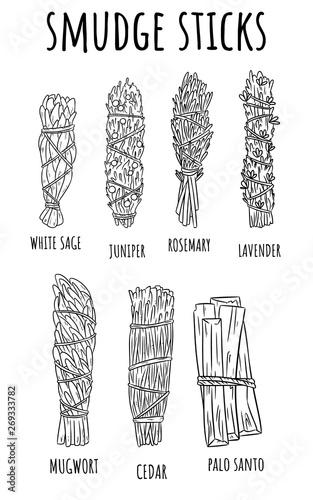 Cuadros en Lienzo Sage smudge sticks hand-drawn set of sketch doodles