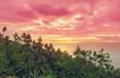 canvas print picture Tropical landscapes