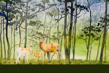 Paintings Watercolor Landscape...