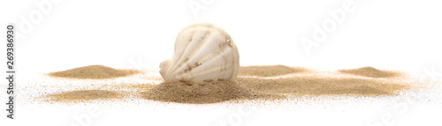 Fotografia Sea shell in sand pile isolated on white background