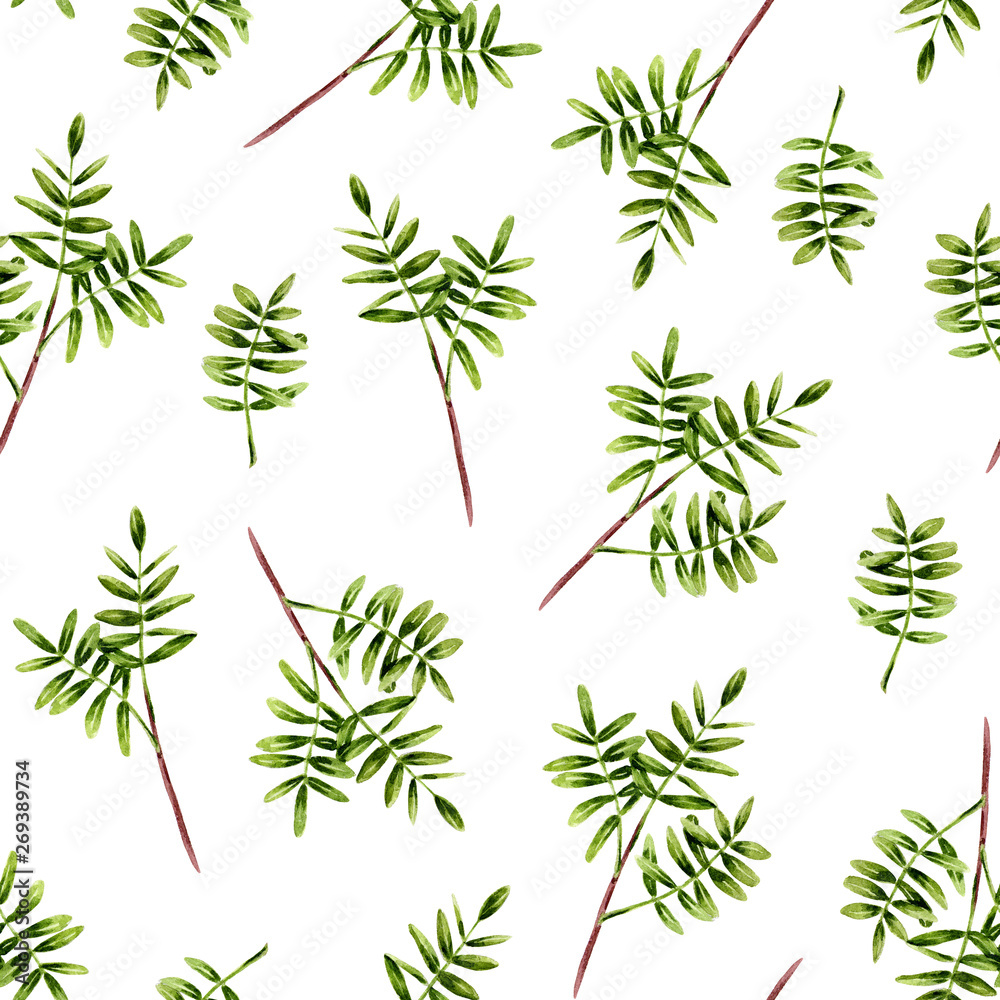 Seamless pattern of watercolor green sprigs with leaves. Isolated hand painted leaves on white perfect for card making, vintage design and fabric textile. Illustration