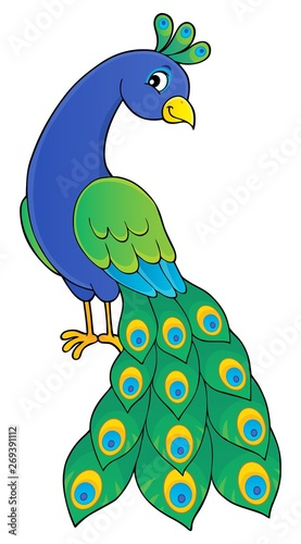 Fotobehang Voor kinderen Peacock theme image 2