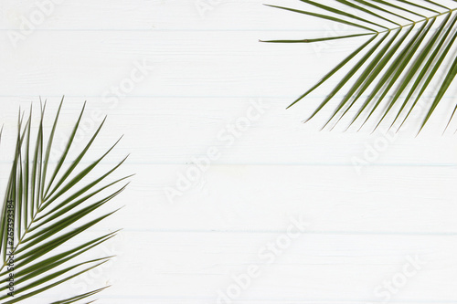 Fototapeta palm leaves on a wooden background with free space for text. a draft for a design. minimalism, creativity. flatlay obraz na płótnie