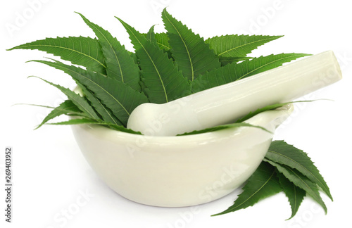 Photo  Medicinal neem leaves in a mortar