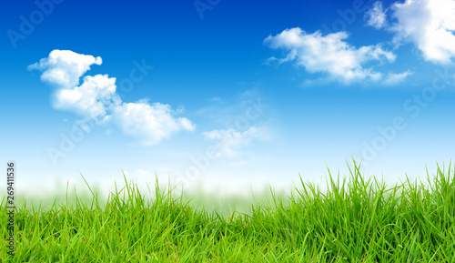 Foto op Plexiglas Blauwe hemel Spring nature background with grass and blue sky. Art abstract spring or summer background. Illustration stock.