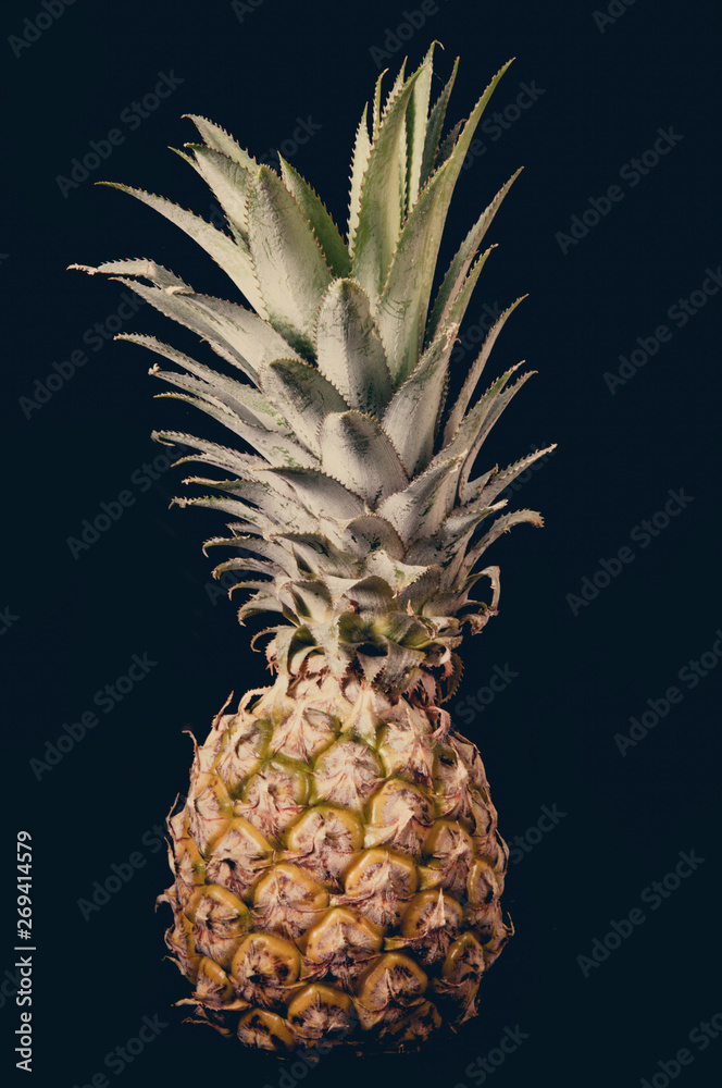 pineapple old color on a black background
