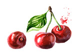 Fresh ripe red cherry. Watercolor hand drawn illustration, isolated on white background