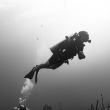 Scuba Diver Underwater, Three ...