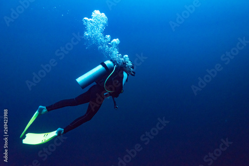Obraz Scuba diver under water, The Great Blue Hole, Belize Barrier Reef, Lighthouse Reef, Belize - fototapety do salonu