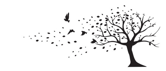 Tree wind leaves birds vector, wall decals, wall decor. Black Art design isolated on white background. Autumn season, tree in autumn