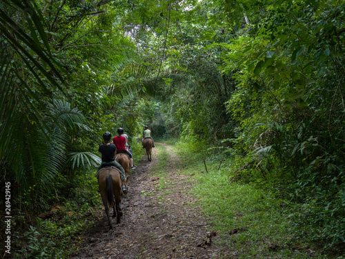 Tourists riding horses, Chaa Creek Road, Chaa Creek Nature Reserve, San Ignacio, Belize
