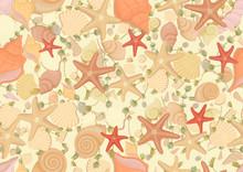 Seamless Pattern Of Seashells. Vector Background With Seashells Starfish Seaweed Design