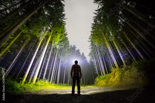 Fotografija  Back view of man with head flashlight standing on forest ground road among tall brightly illuminated spruce trees under beautiful dark blue sky