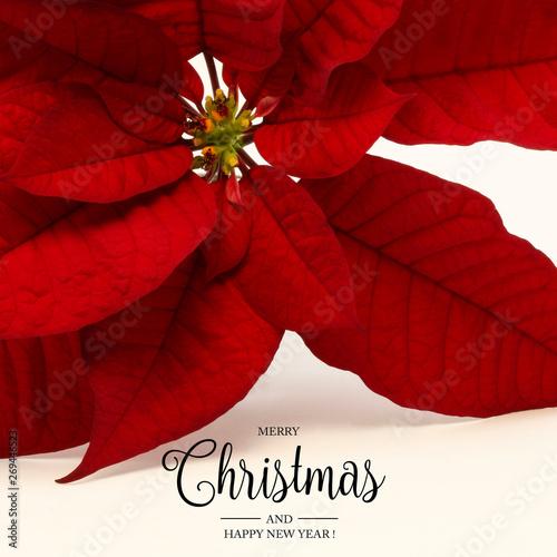 Biglietto di auguri di Natale e Capodanno con decorazioni festive su sfondo bian Wallpaper Mural