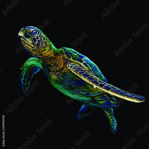 Sea turtle Canvas