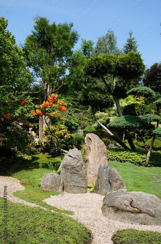 Fototapeta ogród japoński