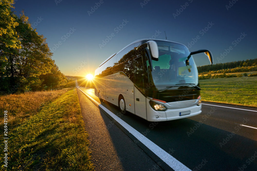 Fototapeta White bus traveling on the asphalt road around line of trees in rural landscape at sunset