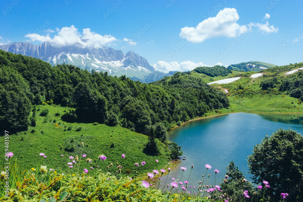 Fototapety, obrazy: Mountain lake and high rocky mountain on a sunny summer day. In the foreground are flowers. Okhero Huko and Mountain Fisht, Caucasian Reserve, Krasnodar Territory, Russia