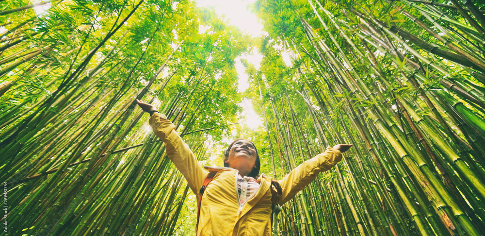 Fototapeta Sustainable eco-friendly travel tourist hiker walking in natural bamboo forest happy with arms up in the air enjoying healthy environment renewable resources.