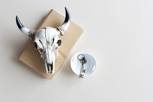 Skull On Tan Notebook Vintage Keys