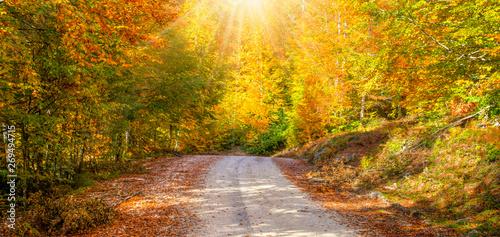 Montage in der Fensternische Melone Autumn landscape in (seven lakes) Yedigoller Park Bolu, Turkey