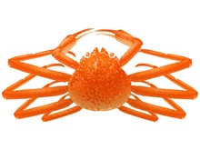 A Boiled Snow Crab Illustration