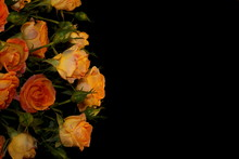 Beautiful Yellow Rose With Bu...