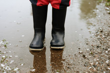 Child Walks After Rain Through The Puddles In Rubber Boots