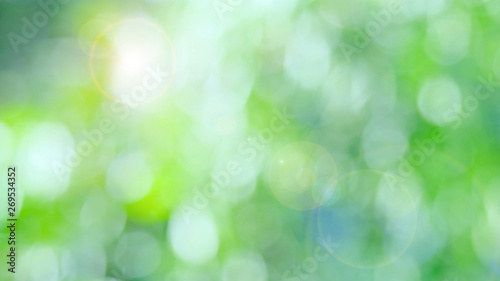Nature green bokeh sun light flare and blur leaf abstract texture background, blurred natural green leaves white background. stock image of bokeh light from the sun through the leaves with copy space