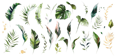 set watercolor leaves - monstera, banana palm, fern. herbal illustration. Botanic tropic composition. Exotic modern design