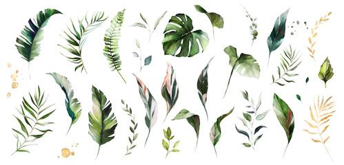set watercolor leaves - monstera, banana palm, fern. herbal illustration. Bot...