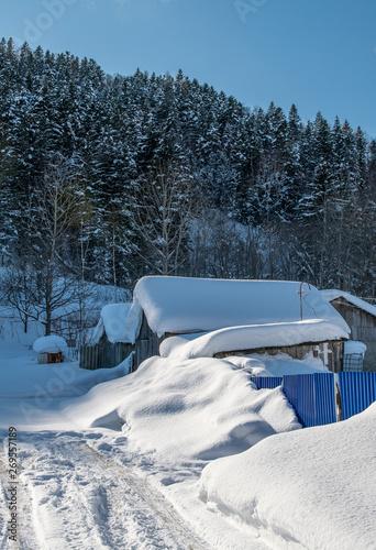 Fototapety, obrazy: bench in the snow