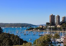 New South Wales - Rushcutter's Bay Sydney On An Autumn Day With Blue Sky