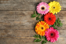 Composition With Beautiful Bright Gerbera Flowers On Wooden Background, Top View. Space For Text