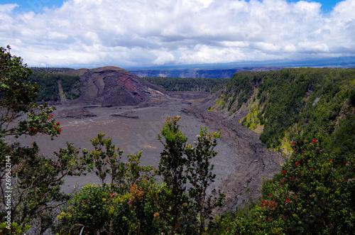 Photo sur Toile Jungle Massive soldified Lava field in Kilauea Iki crater