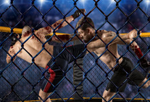 MMA Boxers Fighters Fight In F...