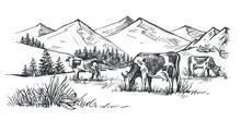 Three Cows In The Mountains Dr...