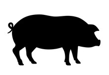Pig Silhouette Vector Icon