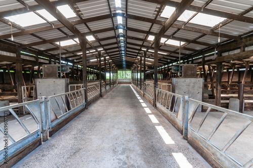 Fotografía Inside a clean, empty cattle shed