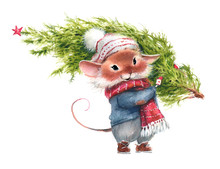 Watercolor Illustration Of A Mouse, A Symbol Of 2020, Carrying The Christmas Tree A White Background