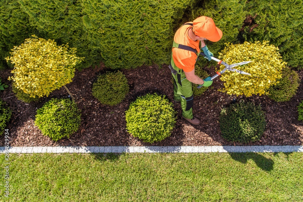 Fototapety, obrazy: Professional Gardener at Work