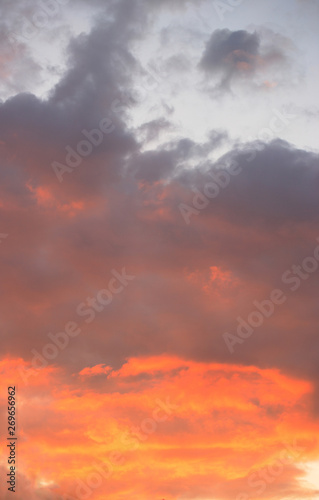 Fototapety, obrazy: sunset sky at summer