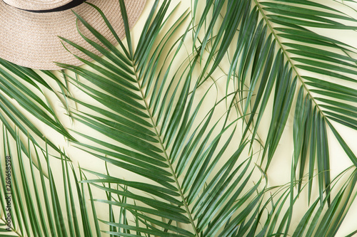 Wall Murals Tropical leaves Tropical leaves Monstera on pink background. Flat lay, top view