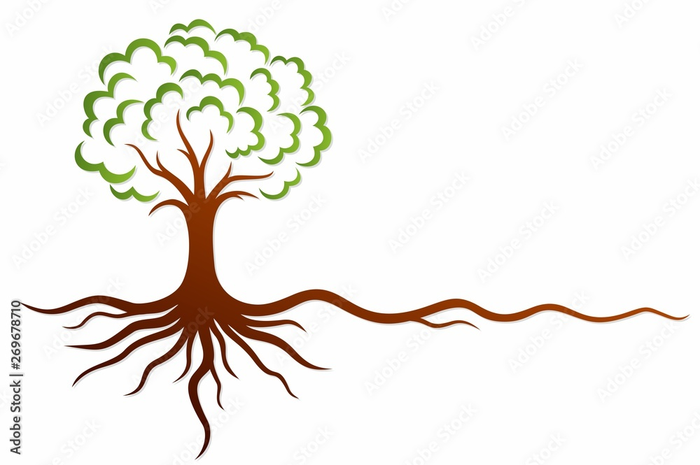 Fototapeta A symbol of the stylized tree with roots.