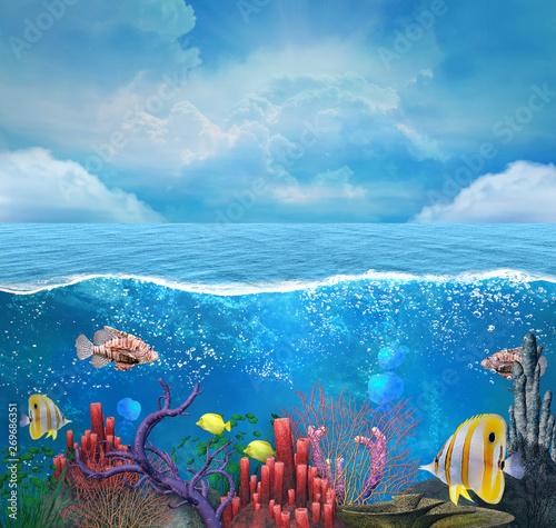 Fotografía  Coral reef background