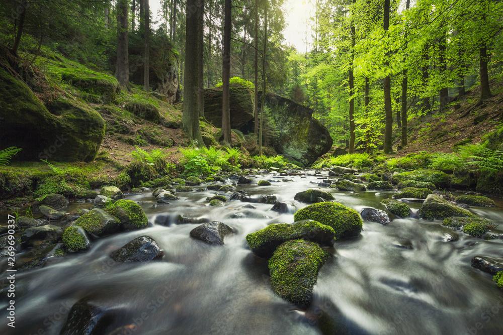 Fototapety, obrazy: Fluss Kirnitzsch im Khaatal (Böhmische Schweiz) - Langzeitbelichtung