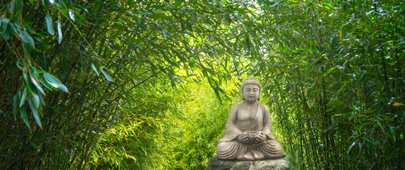 Fototapetabuddha statue im bambuswald